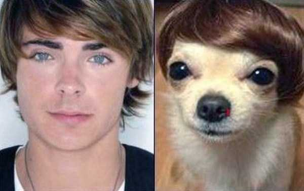 celebs-dog-look-alikes (4)