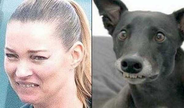 celebs-dog-look-alikes (5)