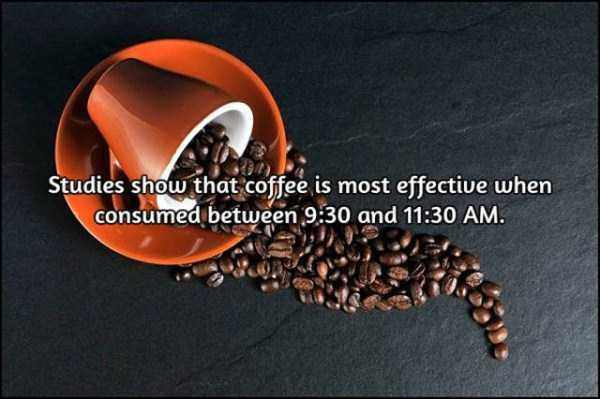 facts-about-coffee (3)