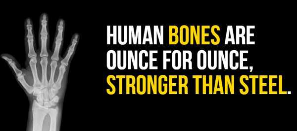 facts-about-human-body (9)