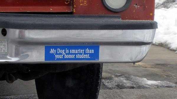 funny-creative-bumper-stickers-38