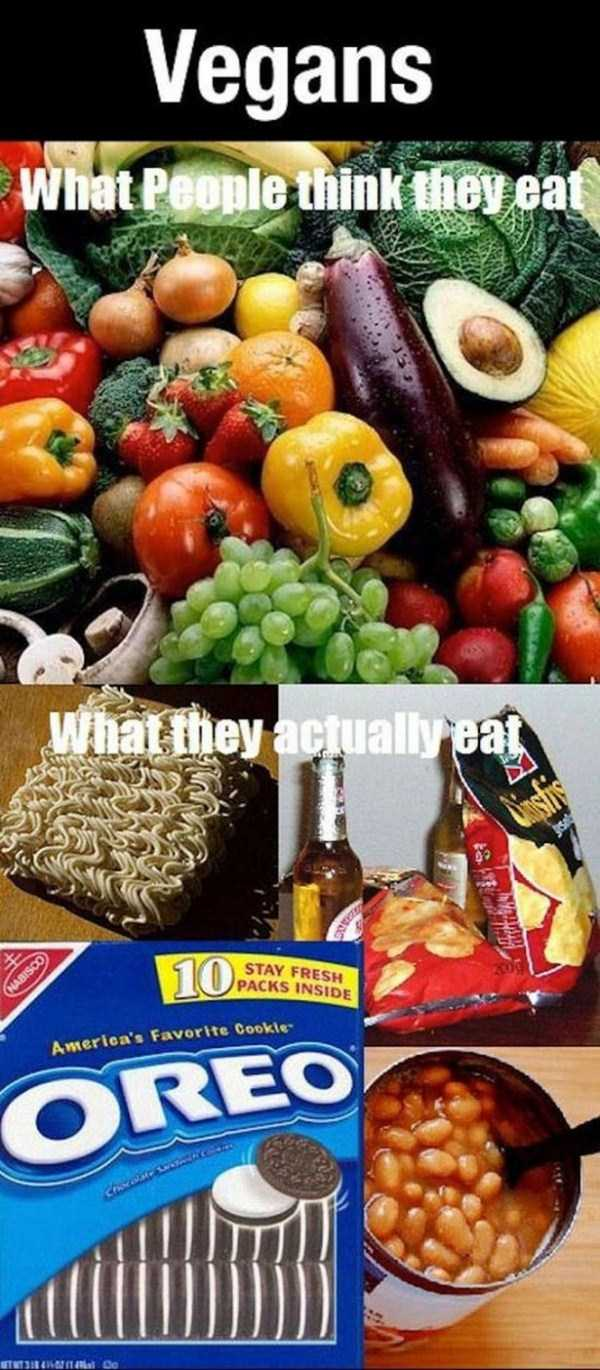 funny-expectations-vs-reality-12