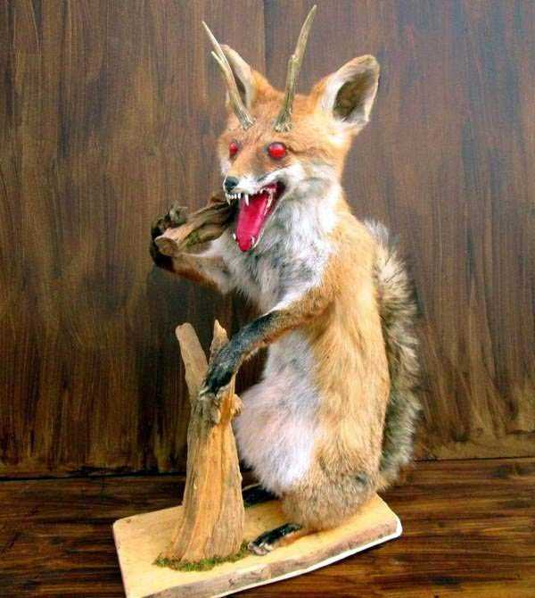 the-worst-taxidermy-fails-14