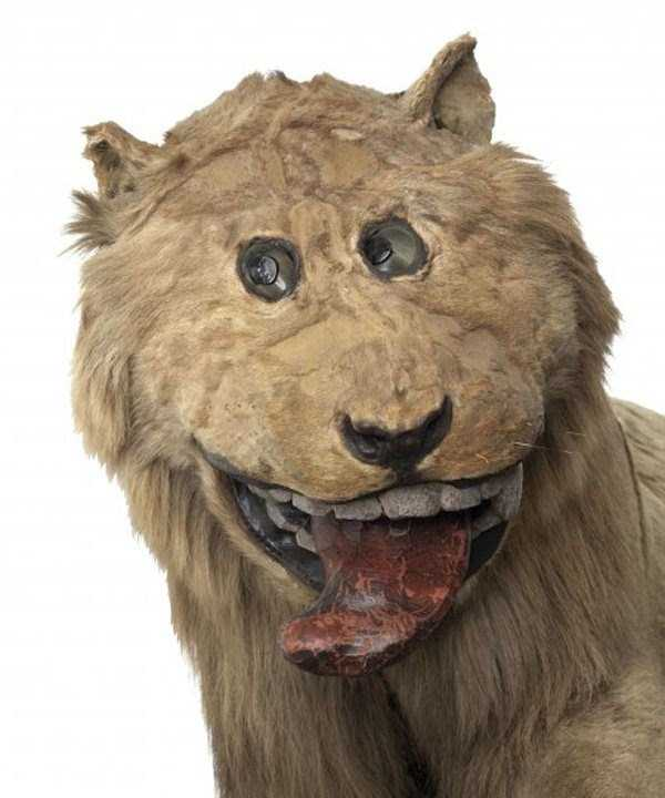 the-worst-taxidermy-fails-23