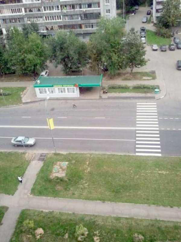 wtf-funny-russia-photos-13