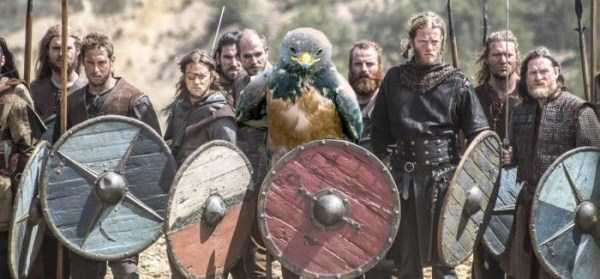 confident-hawk-photoshop-battle-43