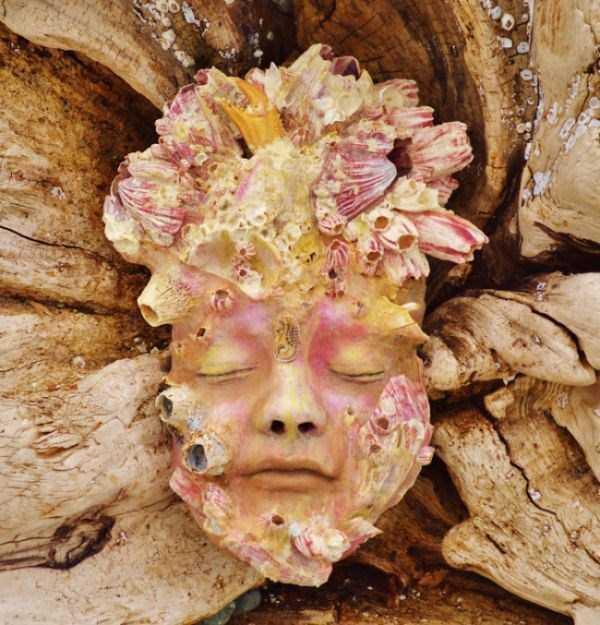 driftwood-sculptures-debra-bernier-1
