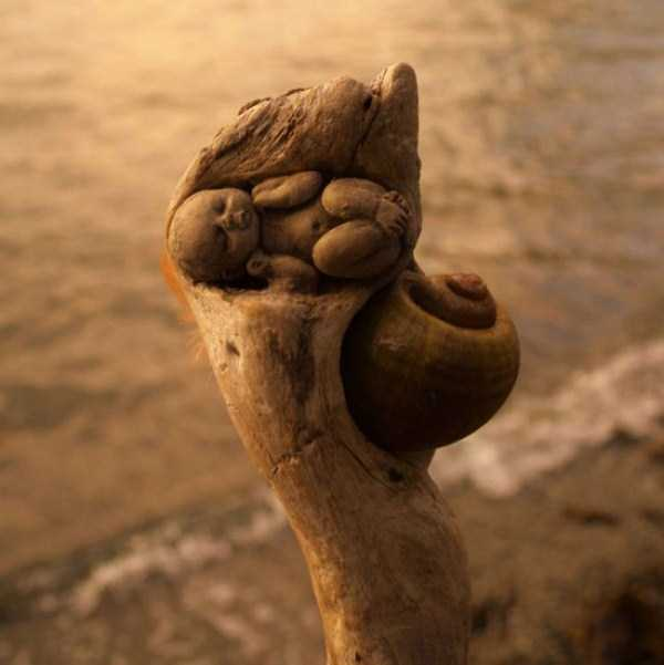 driftwood-sculptures-debra-bernier-23