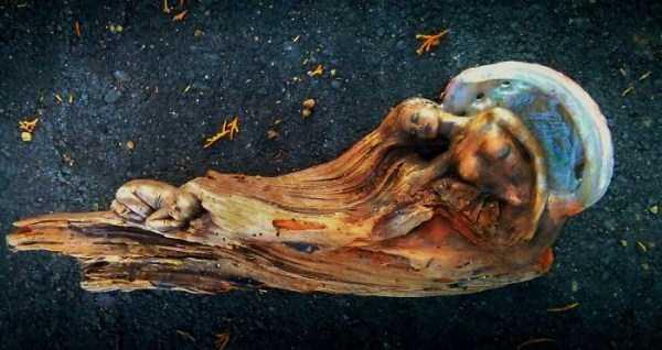 driftwood-sculptures-debra-bernier-24