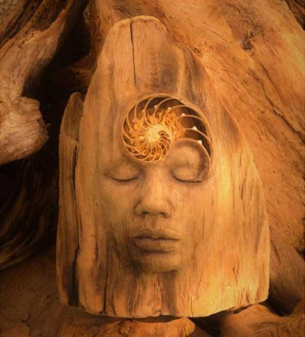 driftwood-sculptures-debra-bernier-25
