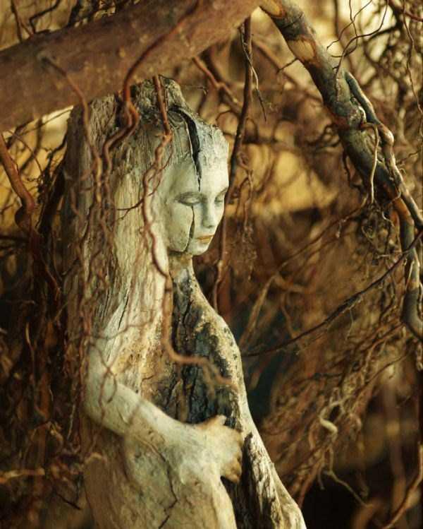 driftwood-sculptures-debra-bernier-27