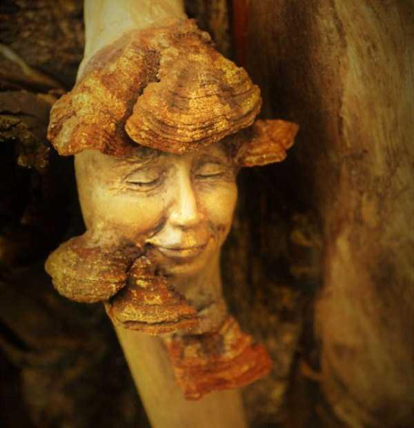 driftwood-sculptures-debra-bernier-28