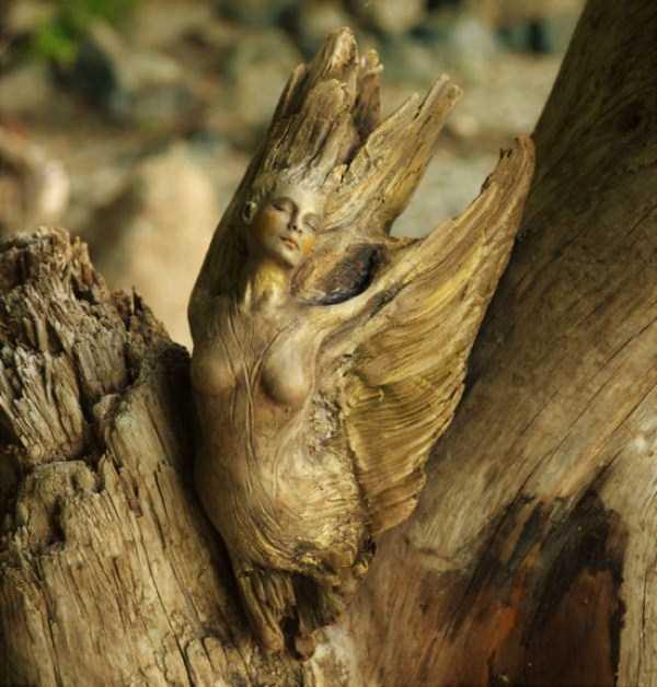 driftwood-sculptures-debra-bernier-29