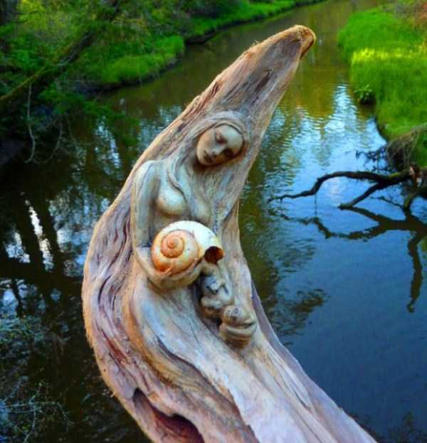 driftwood-sculptures-debra-bernier-6