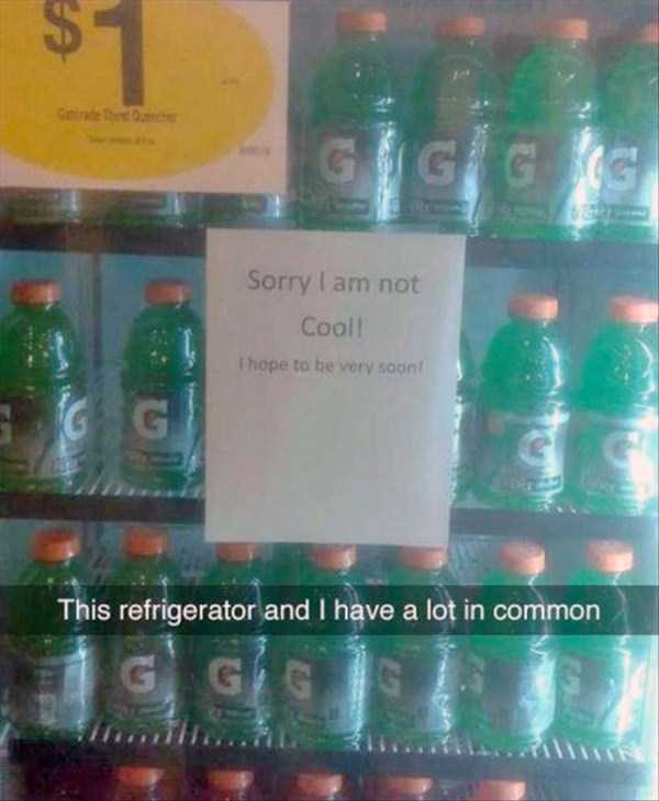 funny-pics-with-hilarious-captions-46