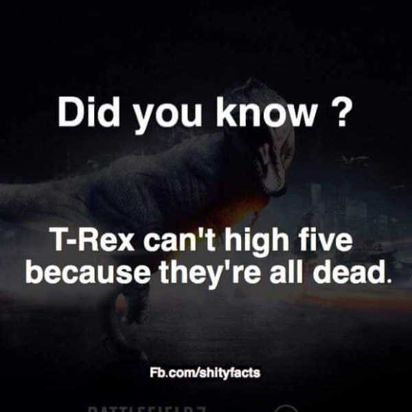 funny-shitty-facts-18
