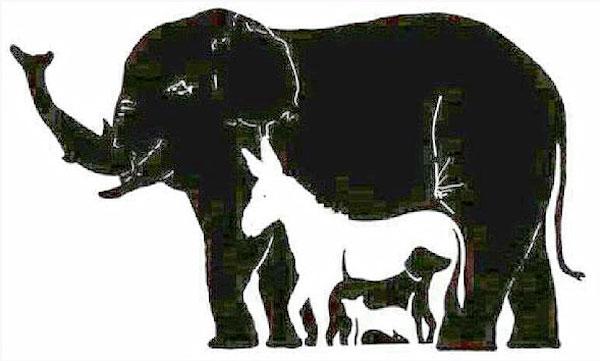 hidden-animals-illusion-1
