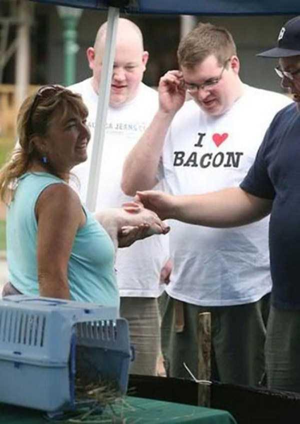 hilarious-shirt-slogans-13