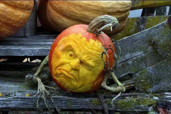 pumpkin-heads-1_renamed_15716
