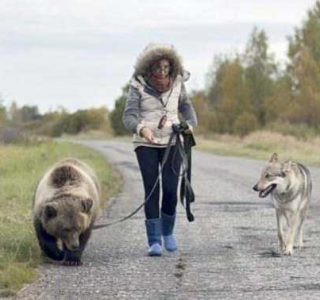 50 WTF Photos from the Planet Russia