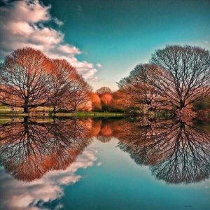 amazing-reflections-25