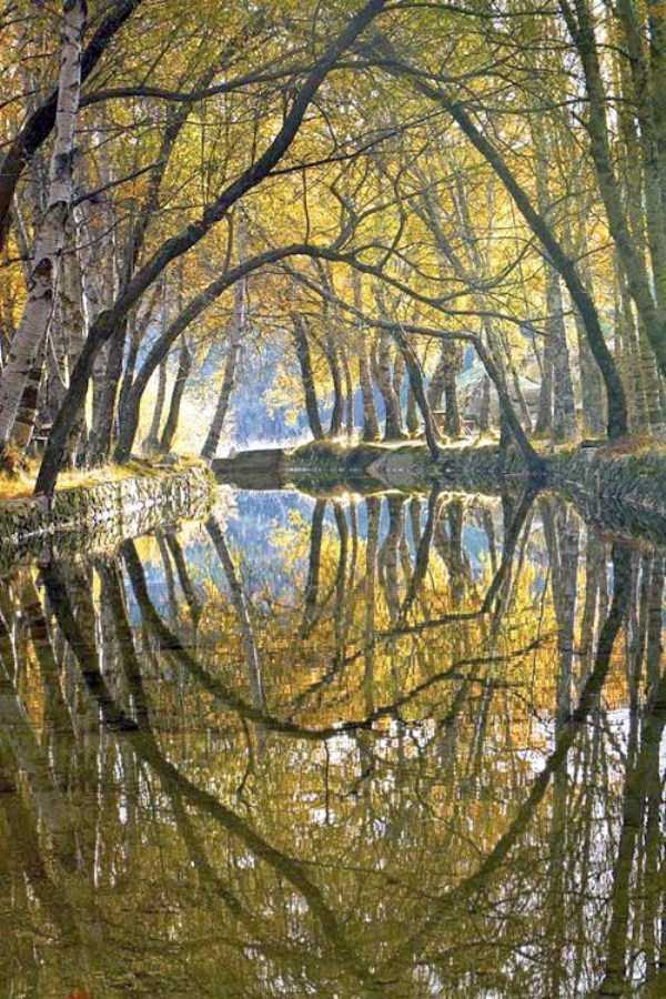 amazing-reflections-3