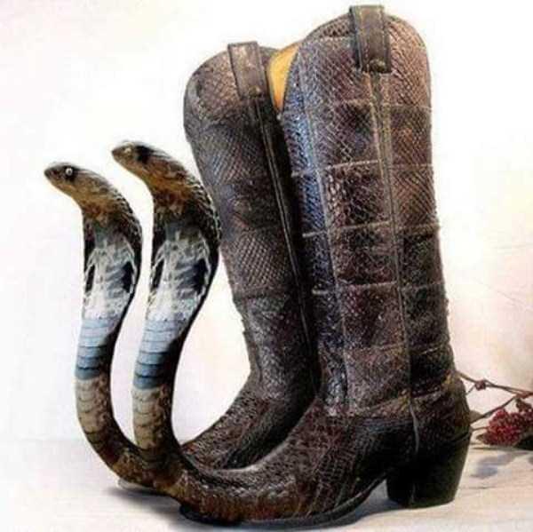 bizarre-women-shoes-6