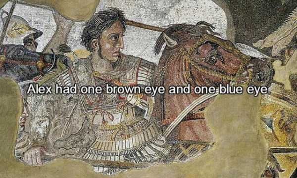facts-about-alexander-the-great-12