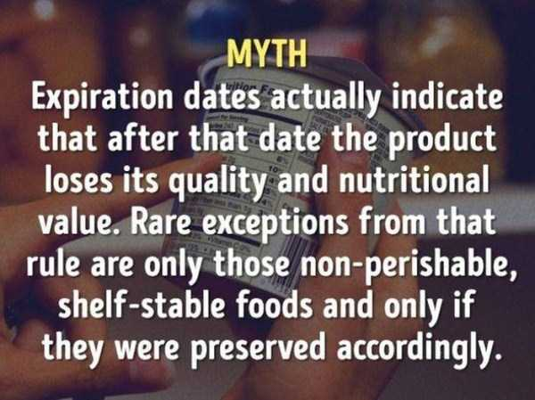 food-myths-2