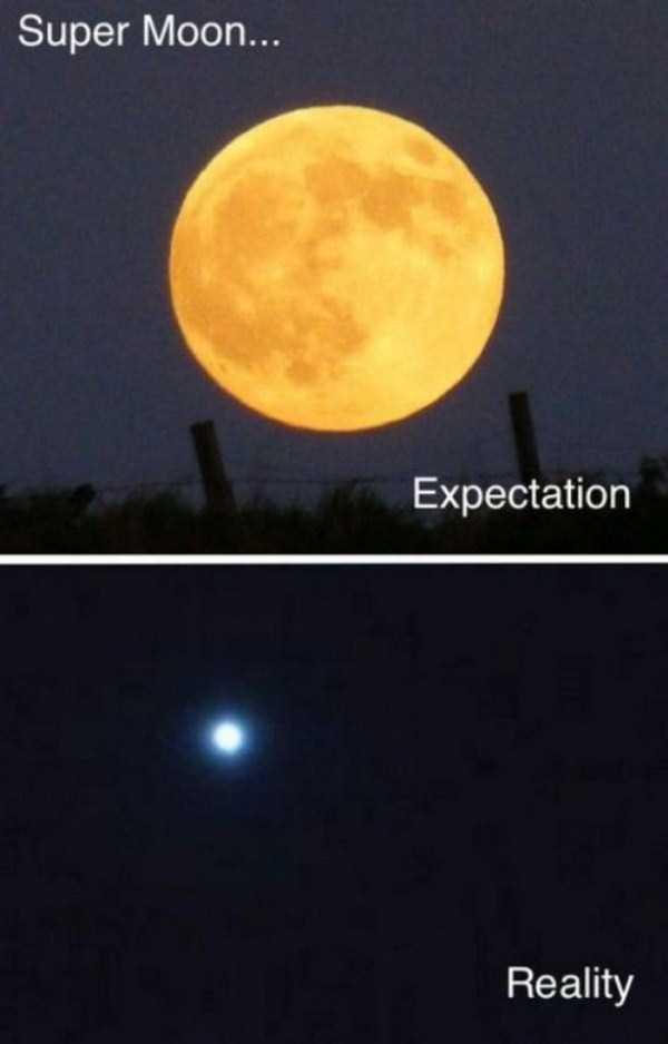 funny-expectations-vs-reality-14