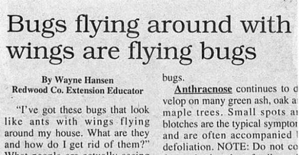 funny-newspaper-headlines-9