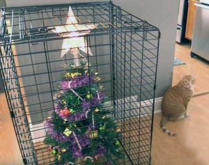 christmas-trees-protected-from-pets (1)
