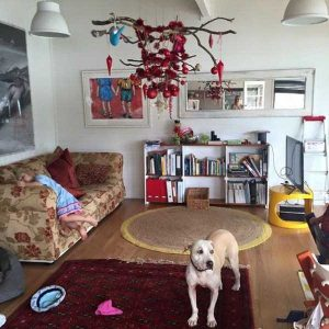 christmas-trees-protected-from-pets (11)