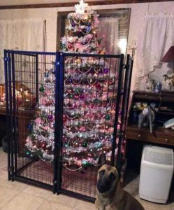 christmas-trees-protected-from-pets (14)