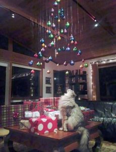 christmas-trees-protected-from-pets (18)