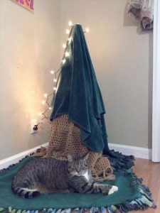 christmas-trees-protected-from-pets (2)