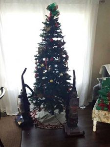 christmas-trees-protected-from-pets (21)