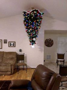 christmas-trees-protected-from-pets (26)