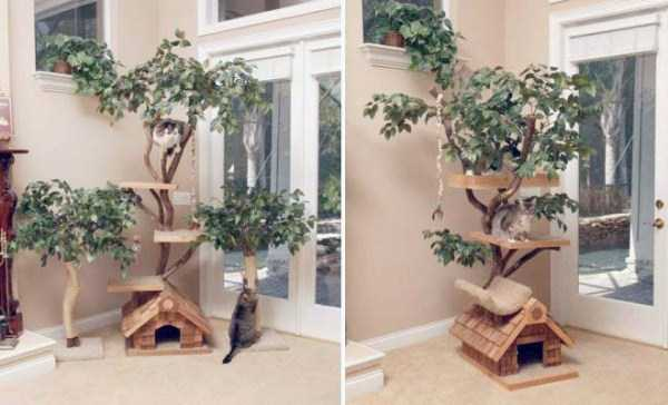 cool-pets-homes (12)