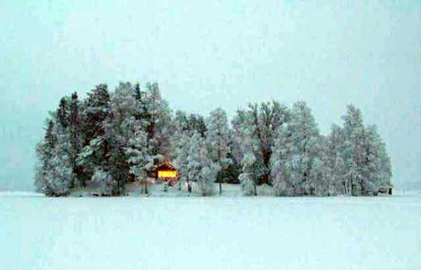 funny-winter-pics-20