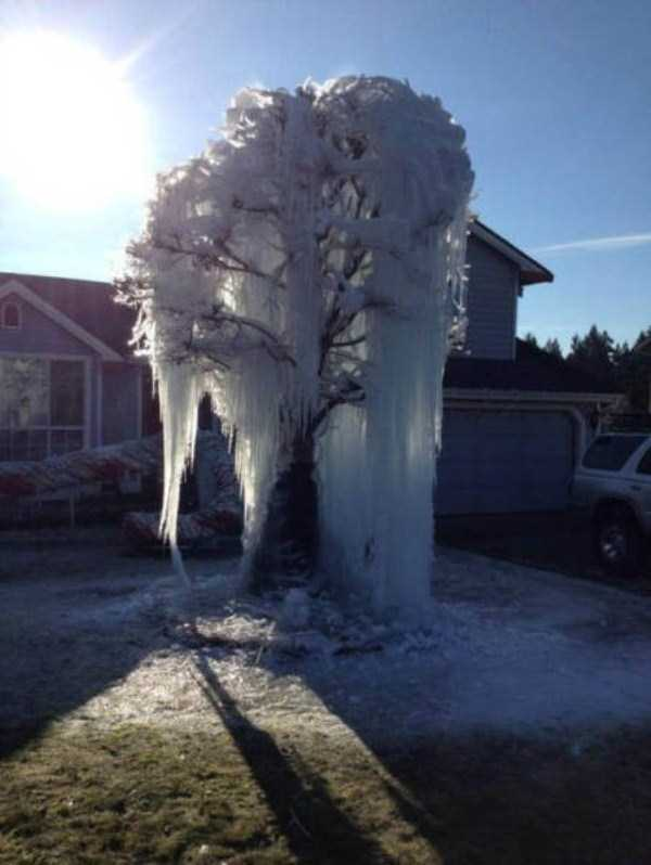 funny-winter-pics-26