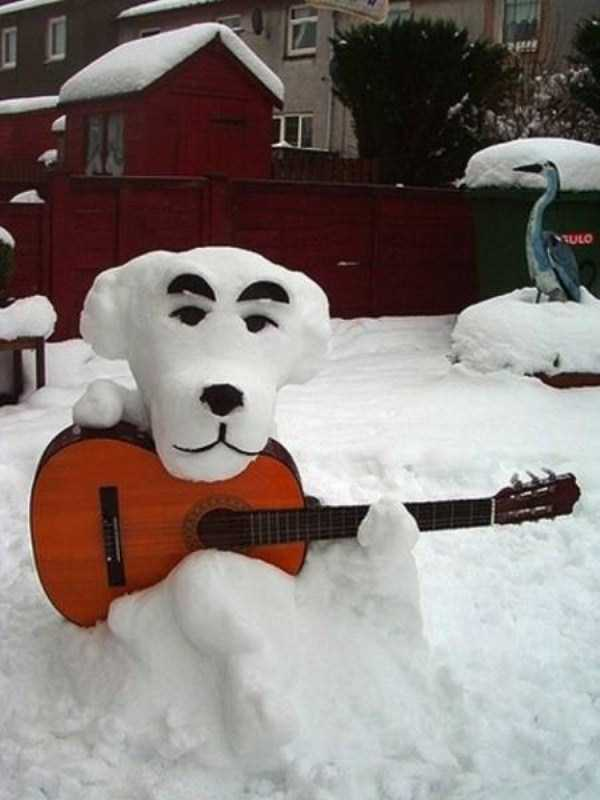 funny-winter-pics-32