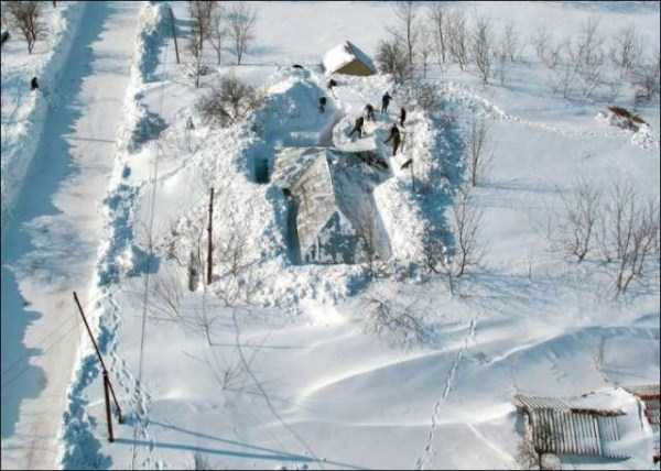 funny-winter-pics-43