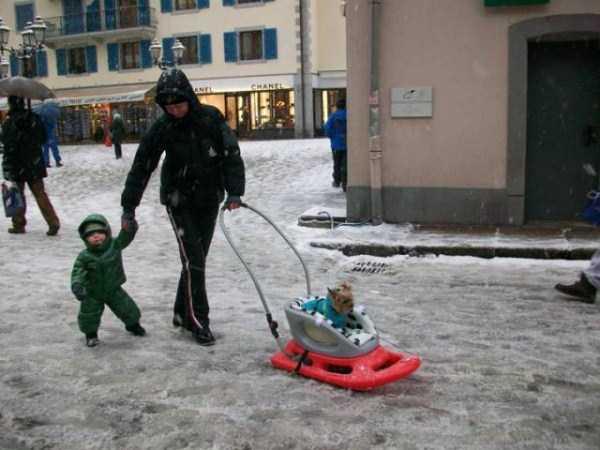 funny-winter-pics-46
