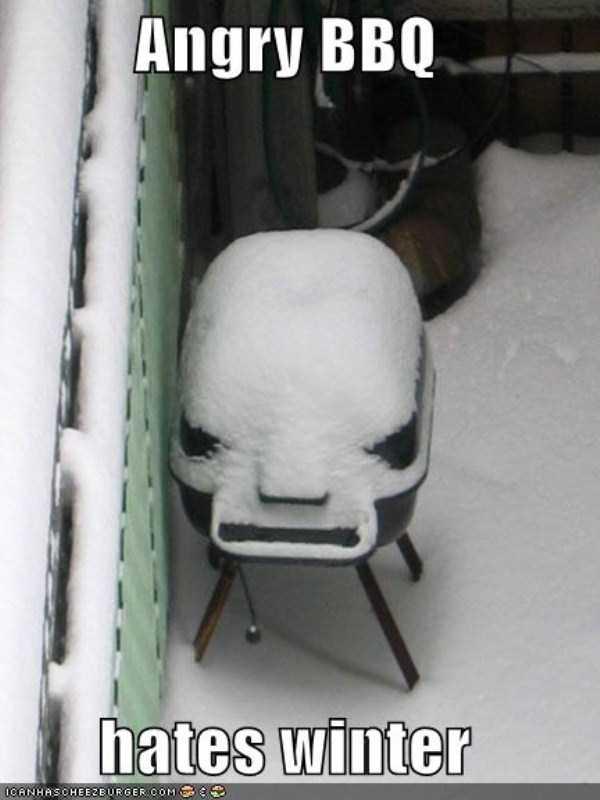 funny-winter-pics-5