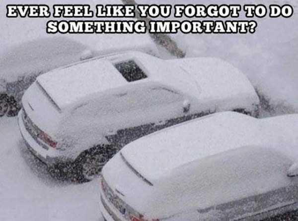 funny-winter-pics-9