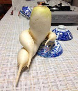 unusual-shaped-fruits-vegetables (17)