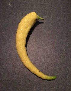 unusual-shaped-fruits-vegetables (40)