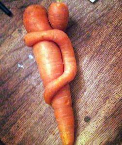 unusual-shaped-fruits-vegetables (46)