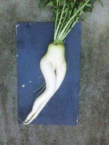unusual-shaped-fruits-vegetables (78)